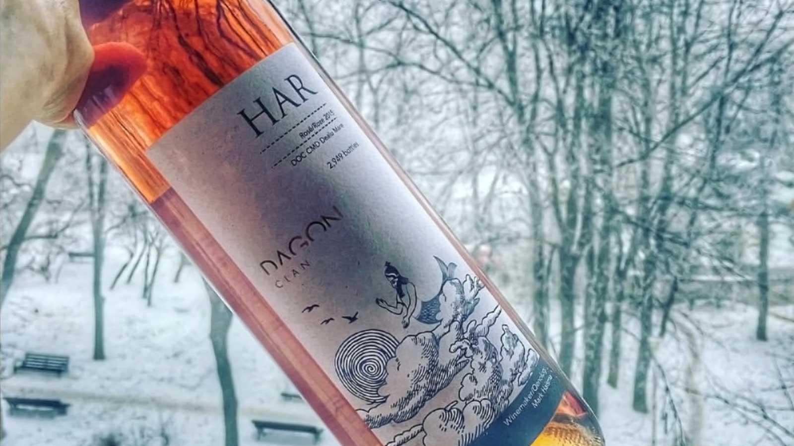 vin Har cu peisaj de iarna
