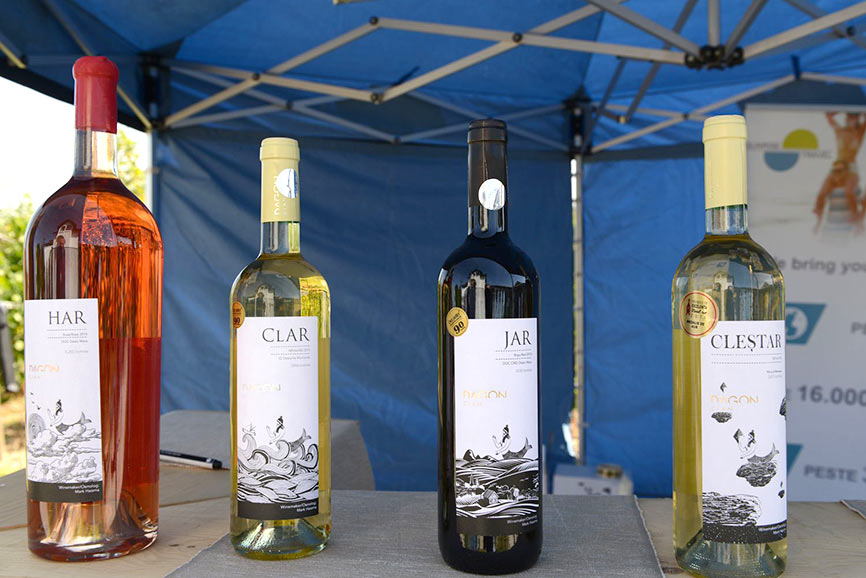 open day at ceptura - dagon wines