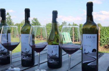 Exotic Wine Travel